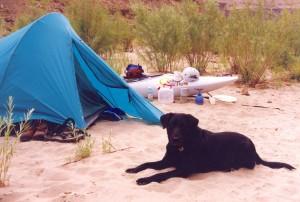 PFD pillow - Green River 1996